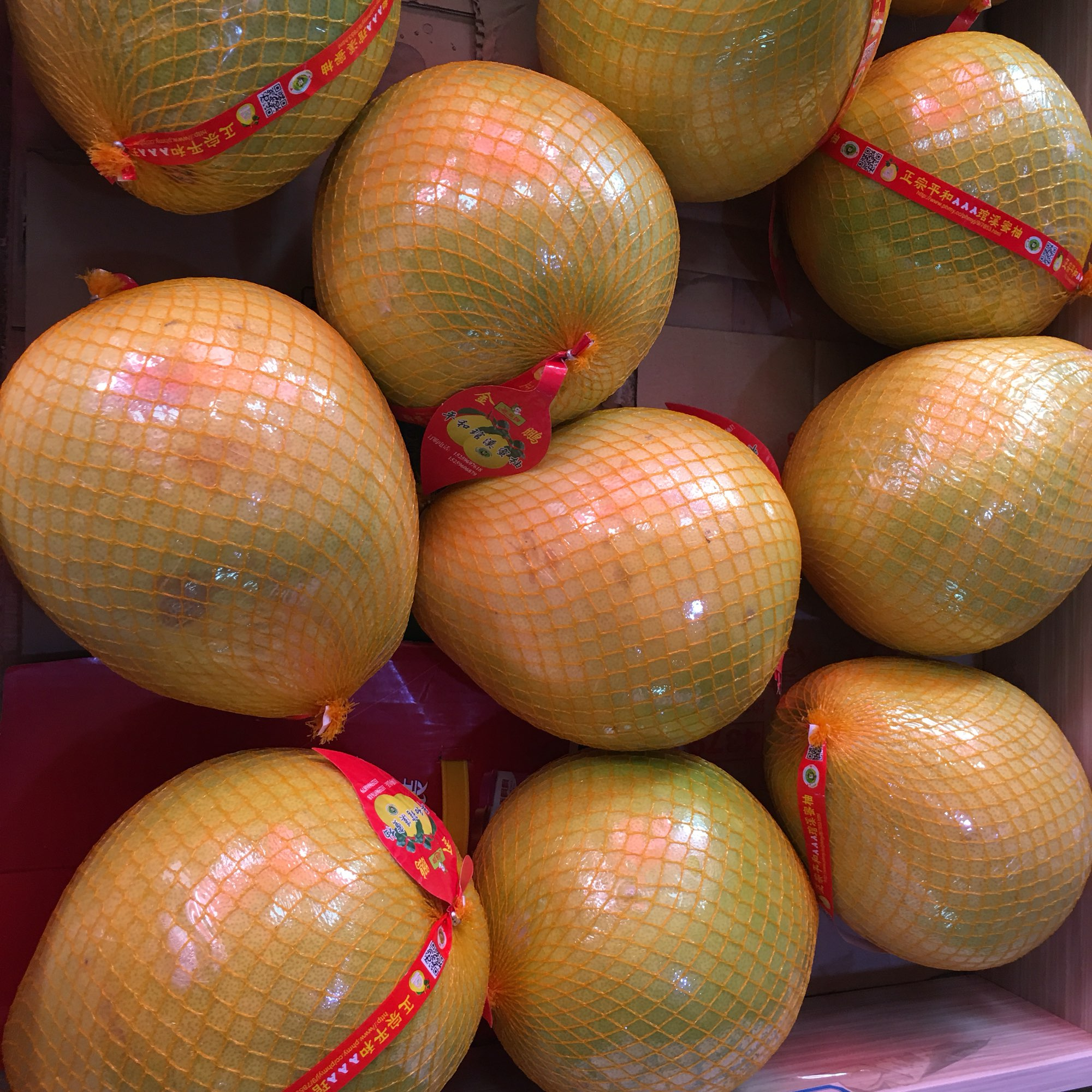 幼儿蜜柚手工作品制作